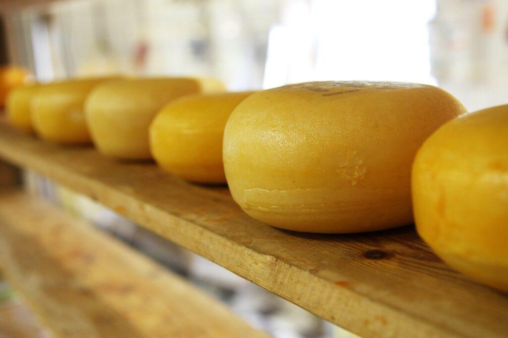 formatges ribera ebre